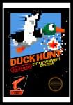 nes_duckhunt