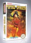 NES - Flying Dragon: The Secret Scroll