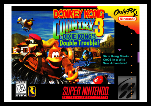 snes_donkeykongcountry3_poster