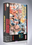 SNES - World Heroes 2